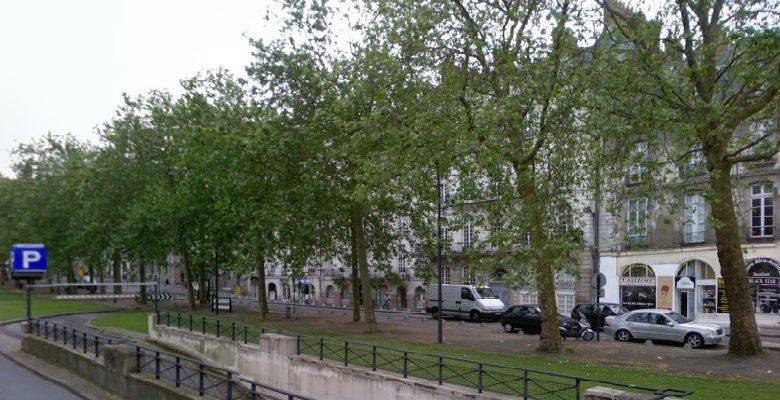 Nantes : la place du Commerce déshabillée de ses arbres